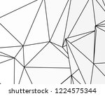 asymmetrical texture with... | Shutterstock .eps vector #1224575344