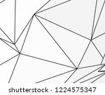 asymmetrical texture with... | Shutterstock .eps vector #1224575347