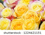 natural roses delicate yellow...   Shutterstock . vector #1224621151