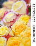 natural roses delicate yellow...   Shutterstock . vector #1224621181