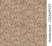 seamless granite stone smooth... | Shutterstock . vector #1224629257