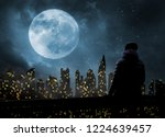 alone in a big city at night   Shutterstock . vector #1224639457