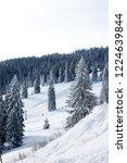 winter in schwarzwald. high...   Shutterstock . vector #1224639844