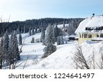 winter in schwarzwald. high...   Shutterstock . vector #1224641497