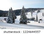 winter in schwarzwald. high...   Shutterstock . vector #1224644557