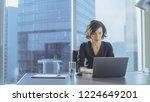 beautiful successful... | Shutterstock . vector #1224649201