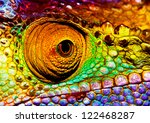 Photo Of Colorful Reptilian Ey...