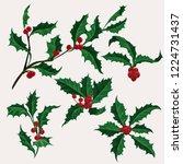 holly vector clip art set of 5...   Shutterstock .eps vector #1224731437