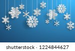 christmas illustration with... | Shutterstock . vector #1224844627