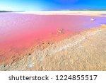 pink salt lake at gregory in...   Shutterstock . vector #1224855517