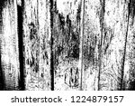 abstract background. monochrome ...   Shutterstock . vector #1224879157