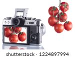 photographing a tomato on a... | Shutterstock . vector #1224897994