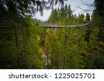 side view of the capilano...   Shutterstock . vector #1225025701
