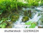 Water Runs Among The Stones