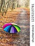 opened multicolored umbrella... | Shutterstock . vector #1225215781