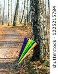 colorful umbrella in autumn... | Shutterstock . vector #1225215784