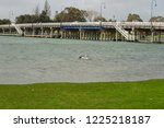 landscape of perth surroundings | Shutterstock . vector #1225218187