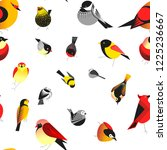 bird different types of animals ...   Shutterstock .eps vector #1225236667