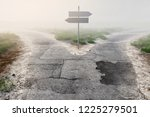 signpost at fork in the fog  3d ... | Shutterstock . vector #1225279501