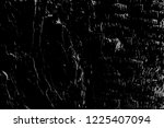 abstract background. monochrome ... | Shutterstock . vector #1225407094