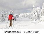 cross country skiing   Shutterstock . vector #122546104