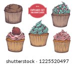 vector collection of hand drawn ... | Shutterstock .eps vector #1225520497