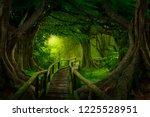 deep tropical jungles of... | Shutterstock . vector #1225528951