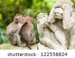 Stock photo long tailed macaques macaca fascicularis in sacred monkey forest ubud indonesia 122558824