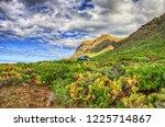 north west coast of tenerife... | Shutterstock . vector #1225714867