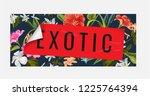 exotic sticker peel off from... | Shutterstock .eps vector #1225764394