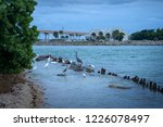 sebastian inlet and waterways | Shutterstock . vector #1226078497