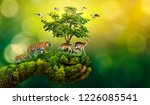 concept nature reserve conserve ... | Shutterstock . vector #1226085541