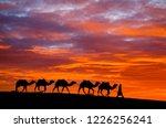 silhouette of camel caravan is... | Shutterstock . vector #1226256241