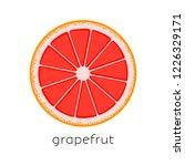 citrus slice. piece of citrus...   Shutterstock .eps vector #1226329171
