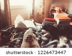 cozy winter day at home with... | Shutterstock . vector #1226473447