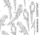 macaw sketch seamless pattern... | Shutterstock . vector #1226571367
