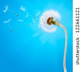 Dandelion On The Long Stem And...