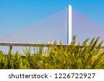 jiangmen yamenyu yangshui... | Shutterstock . vector #1226722927