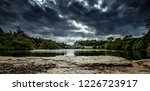 rossmore forest park is a... | Shutterstock . vector #1226723917