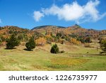 view of the autumn leaves of...   Shutterstock . vector #1226735977