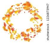 oak  maple  wild ash rowan... | Shutterstock .eps vector #1226873947