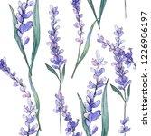 purple lavender. floral... | Shutterstock . vector #1226906197