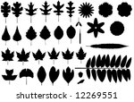 collected vector silhouettes of ... | Shutterstock .eps vector #12269551