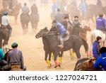 shymkent  kazakhstan  november... | Shutterstock . vector #1227024721