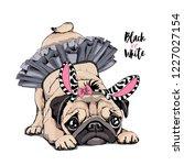 cute pug in a ballerina tutu ... | Shutterstock .eps vector #1227027154