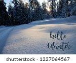 hello winter.winter forest...   Shutterstock . vector #1227064567