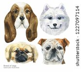 portrait cute dog set isolated... | Shutterstock . vector #1227097114