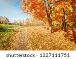 golden autumn in the city park. ...   Shutterstock . vector #1227111751