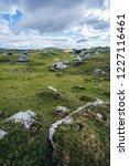 big green alpine mountains...   Shutterstock . vector #1227116461