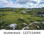 big green alpine mountains...   Shutterstock . vector #1227116464